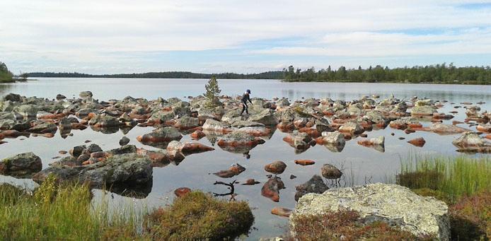 Alligaattorin metsästäjät 1.00 Sing Date 1.30 Sing Date 2.00-6.00 Voice TV SVT.